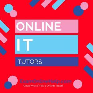 Online Information Technology Class